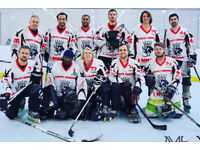 Inline Hockey Players and Goalies Wanted