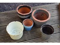 Plant pots free to good home