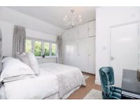 A STUNNING NEWLY DECORATED 4 BEDROOM HOUSE SET ON A POPULAR QUIET ROAD IN THE HIGHGATE WOOD AREA