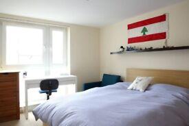 Single Bedroom Edinburgh city centre short term let 15 Dec - 15 Febr