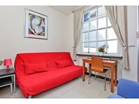 *** All new brand STUDIO flat in central London***