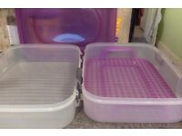 cake caddy cupcake and full tray bakes storage