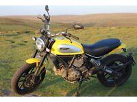 Ducati Scrambler Icon Yellow (2015)