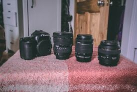 Complete Photography Videography kit. Canon 70D + THREE lenses