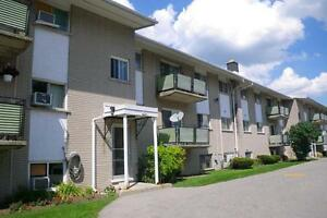 295 Home Street - Two Bedroom Apartment Apartment for Rent Stratford Kitchener Area image 2