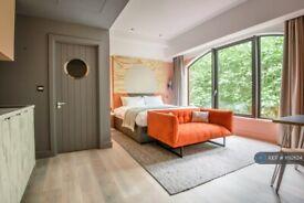 Studio flat in Queens Terrace, Southampton, SO14 (#1192624)