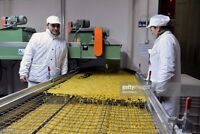 Pasta Factory Hiring Packagers - No weekends or Nights