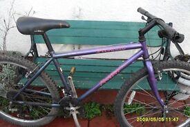 specialised rock hopper adult mountain bike