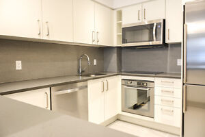 Steps from transit - Newly Renovated Downtown 2 bed - 4 1/2 -