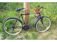Cycles for sale