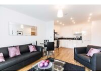 -2double bedroom apartment offering a good size terrace looking into Barrier Park + GYM in E16!