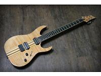 Norwich/Dereham or FREE post. Schecter Banshee Elite 6 String with hard case