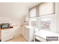 A MODERN STUDIO ROOM/BEDSIT WITH KITCHEN IN WHETSTONE N20