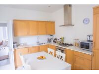 Refurbished Bright 1 Bedroom-flat in Fulham - Munster Village