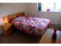 Opportunity to rent a Double Room in luxury shared flat in Nether Edge, Sheffield