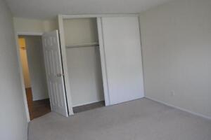 235 Morgan Avenue - One Bedroom Apartment Apartment for Rent Kitchener / Waterloo Kitchener Area image 2