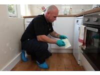 Professional Mice, Rat, Bed bug, Spider, Moth and other Pest Control Services in Waterloo, London.