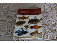 aquarium bits