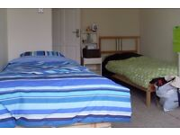 Great Double room available in October, Hove