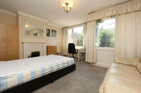 NEW MASSIVe room with GARDEN next to LONDON BRIDGE !