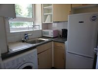 Spacious Studio Flat with Separate Kitchen Near Mile End and Limehouse