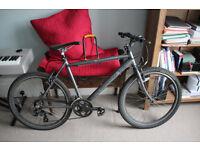 Revolution trail rider bike (comes with D-lock)