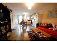 Beautiful 2 double bedroom flat with private garden in Brixton