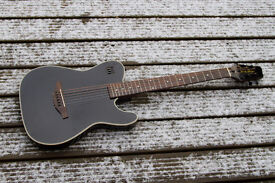 James Neligan Thinline Electro-Acoustic 6-String Guitar