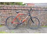 Raleigh Rave Mountain Bike £30