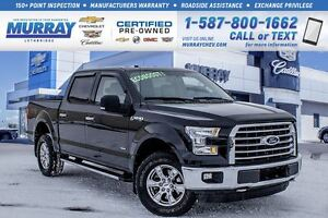 2015 Ford F-150 **Supercrew!  Low KMs!**
