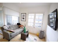 Beautiful 1 bedroom furnished apartment, warehouse conversion, terrace, concierge, walk to Canary Wf
