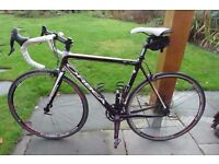 Orbea road bike. size 54, excellent condition