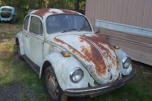WANTED: 1968-1979 Volkswagen Beetle project