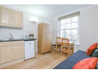 Cozy Studio Flat to rent in Bayswater (4a/4CHG)
