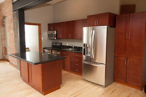 Downtown Kingston 1 bedroom Loft Available August 1, 2017