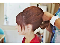 Hair-up courses in Bridal and Vintage for beginners and re-freshing skills. One Day Courses