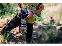 Canon EF 300mm f/2.8 L USM (Non-IS) - PRICE DROP
