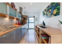 Spectacular river view apart to let near Hydro, compl equi and furni w bills inclu, Finnieston St