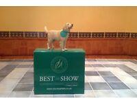 Golden Retriever ornament-Best In Show