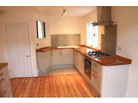 Professional team of Kitchen Extension, Bathrooms, Carpenters, Plumbers, and Loft in London