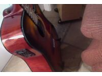 Fender DG22 SCE Acoustic-electric guitar. Fishman A grade pickup.