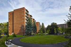 Mont Bleu 2 Bedroom Apartment for Rent in Hull: Gatineau, Quebec Gatineau Ottawa / Gatineau Area image 7