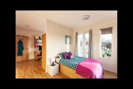 STUDENT ROOM TO RENT IN BIRMINGHAM. STUDIO WITH PRIVATE ROOM, PRIVATE BATHROOM AND PRIVATE KITCHEN
