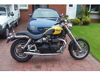 Triumph Speedmaster 865,
