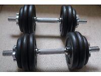 30kg Dumbbell Set Gym Cast Iron
