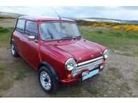 MODIFIED CLASSIC MINI FOR SALE