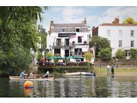Experienced Bar staff for busy riverside pub in Twickenham