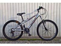 Claud Butler Mayhem Jump Bike