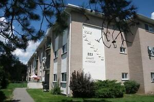 223 Graff Avenue - Three Bedroom Apartment Apartment for Rent
