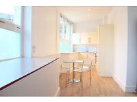 Super MODERN 1 bedroom flat on a lovely tree lined street in Highbury